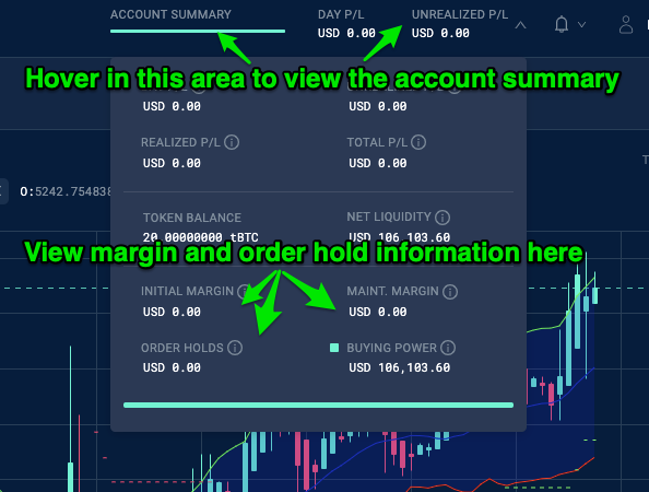 Account_Summary_-_Margin___Order_Holds_-_April_18__2019.png